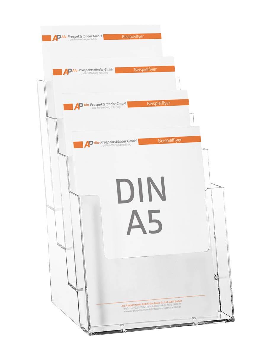 Dina 5