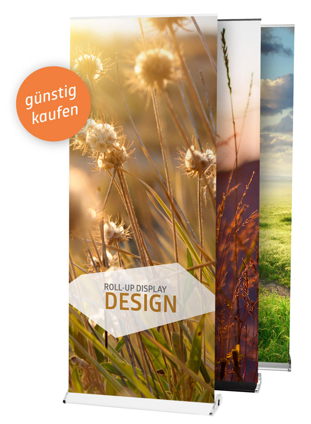 Roll-Up Banner-Display